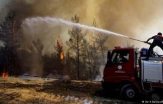 Bakan Pakdemirli: Üç ilde yedi yangın sürüyor