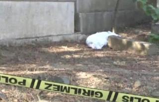 İstanbul'da kefene sarılı ceset paniği!