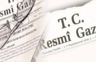 Milyonlarca borçluyu ilgilendiren karar Resmi Gazete'de!