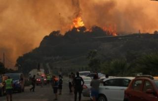 Orman yangını sürüyor: Alevler termik santrali...