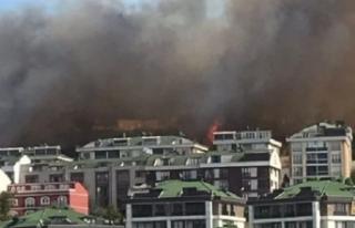 Büyükçekmece'de yangın! Vatandaşlar evlerini...