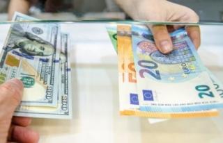Dolar ve euro yeniden hareketlendi!