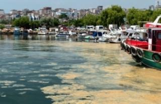 Müsilajın ardından Marmara'da yeni tehlike!