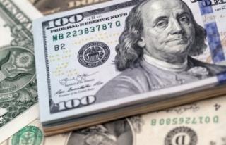 Dolar için korkutan yıl sonu tahmini!