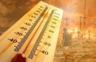 'Pastırma yazı' geliyor: Sıcaklık 33...