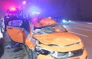 Taksi ata çarptı! At öldü, yolcular yaralandı