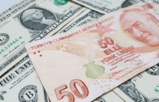 Ünlü ekonomist o soruya cevap verdi: Dolar-TL için...