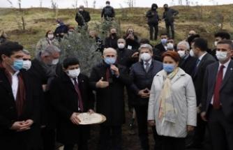 382 sağlık çalışanı anısına zeytin ağacı dikildi