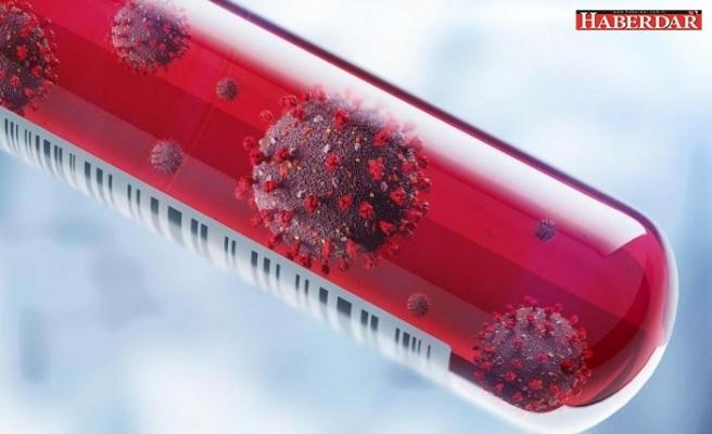 'Başımız belada' diyen Prof. Dr. Ian Lipkin: Daha ölümcül virüsler çıkabilir