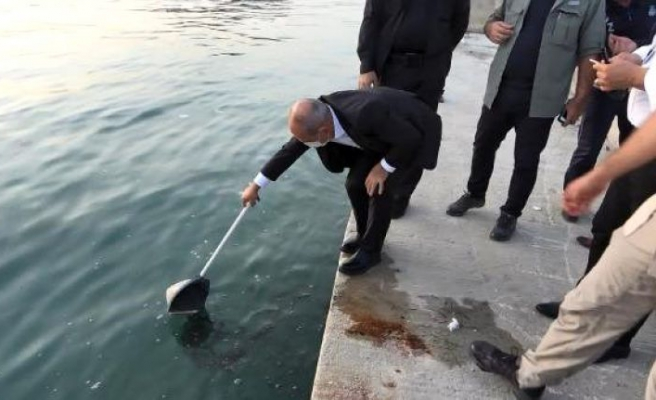Gürpınar'dan Büyükçekmece koyuna kadar denizi kirlettiler