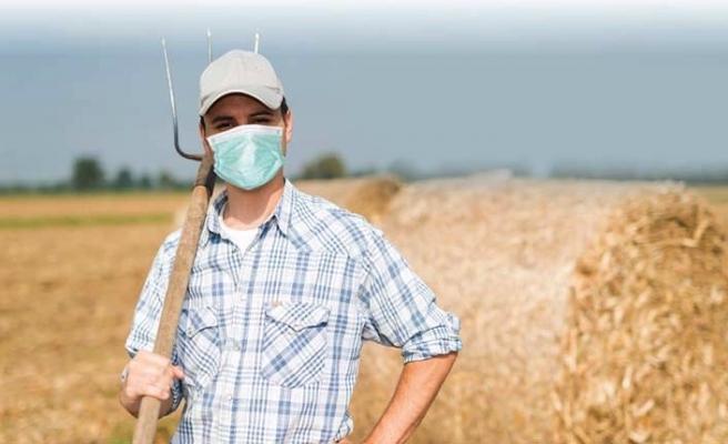 TÜİK: Tarımsal girdi fiyat endeksi yıllık yüzde 17,52 arttı
