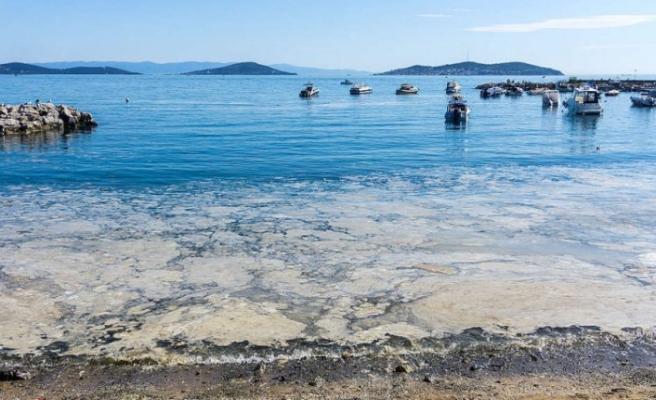 Marmara Denizi'nde tehlike çanları: 'Sıradan bir doğa olayı gibi algılanıyor'