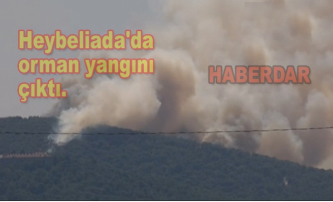 Heybeliada'da orman yangını çıktı.