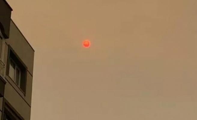 İzmir'de şaşırtan görüntü: Güne böyle uyandılar!