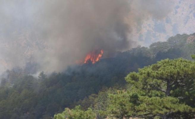 Köyceğiz'de başlayan orman yangını Denizli sınırına yaklaştı