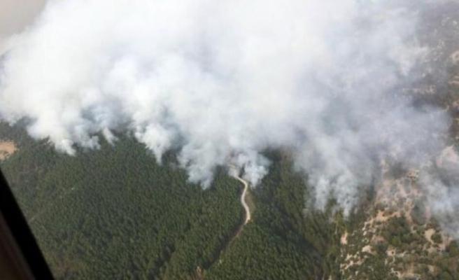 Muğla'da yangın Menteşe ilçesine doğru ilerliyor!