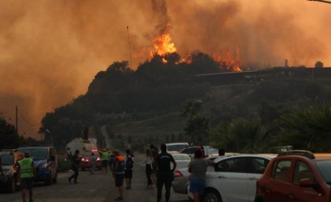 Orman yangını sürüyor: Alevler termik santrali sararsa ne olacak?
