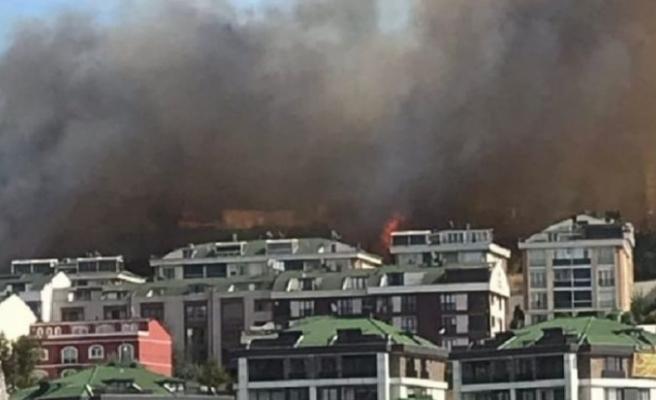Büyükçekmece'de yangın! Vatandaşlar evlerini boşaltıyor