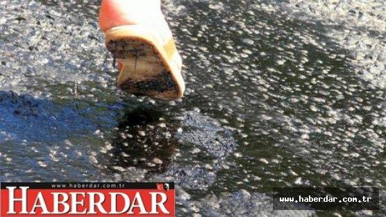 Marmaris'te sıcaktan asfalt eridi!