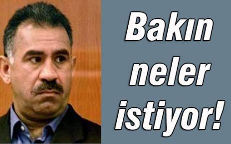 Türk 'devleti zorlamaz' demişti