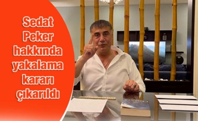 Sedat Peker hakkında yakalama kararı çıkarıldı