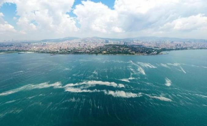 Marmara'da hidrojen sülfür tehlikesi! Denizdeki canlı yaşamını yok edebilir