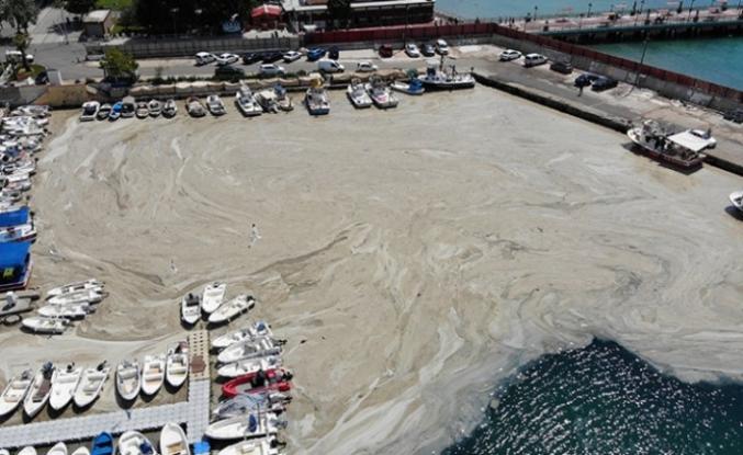 Marmara Denizi'nde 5 bin 300 metreküp müsilaj temizlendi