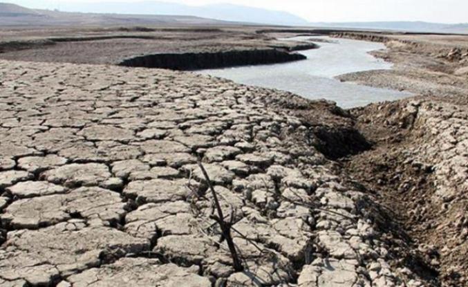 Türkiye'deki göllerin yüzde 60'ı kurudu