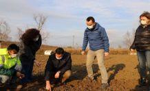 Büyükçekmece'de tarım seferberliği sürüyor