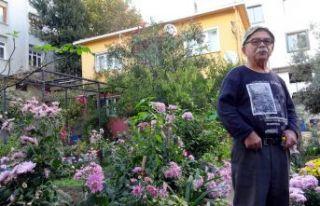 Betonlar içinde tek bahçe
