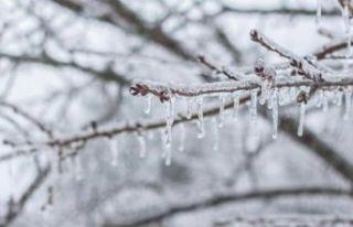 Meteorolojiden yeni uyarı geldi! 4 ilde don, yağış,...