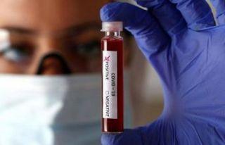 Koronavirüs kan yoluyla bulaşır mı?