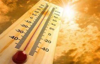Bilim Kurulu üyelerinden uyarı: Afrika sıcağı...
