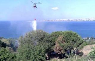 Büyükçekmece'de otluk alandaki yangına helikopterli...