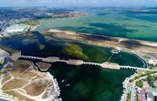 Büyükçekmece Gölü'nde korkutan görüntü:...
