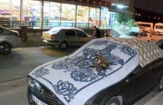 İstanbul'da sağanak ve dolu bekleniyor: Vatandaşlar...