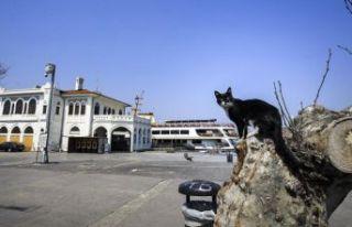 Kabine toplanıyor: Gündem kira düzenlemesi ve sokağa...