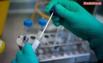 Bilim Kurulu üyeleri ve uzmanlar yanıtladı: Koronavirüs salgını ne zaman bitecek?