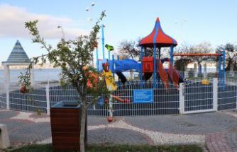 Büyükçekmece'de çocuk parkları meyve ağaçlarıyla donatılıyor
