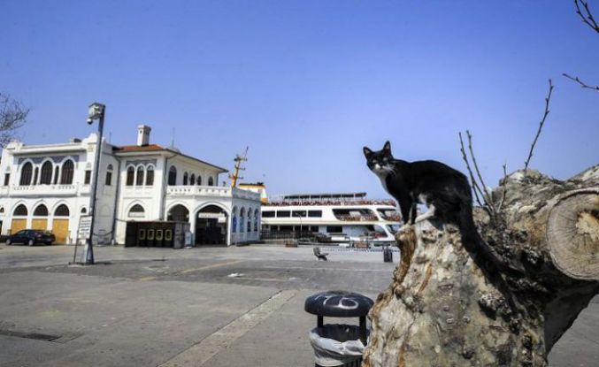 Kabine toplanıyor: Gündem kira düzenlemesi ve sokağa çıkma yasağı