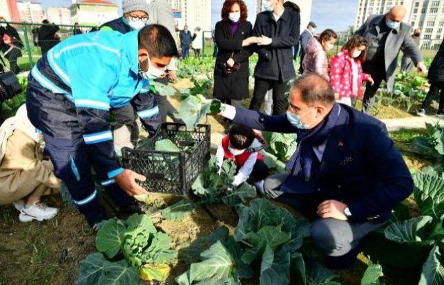 Küçük Bahçıvanlar Parkı'nda ilk hasat yapıldı