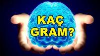 Beyninizle ilgili en çok merak ettiğiniz şeyler!